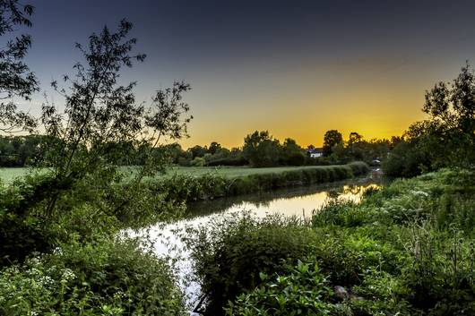 River Mole - Photography competition winner for the 2016 Calendar