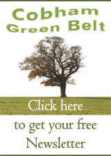 Get your free Cobham Green Belt Newsletter by clicking here