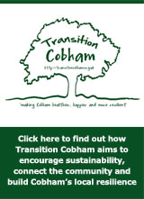 Click here to find out more about Transition Cobham