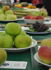 Fruit classes on show