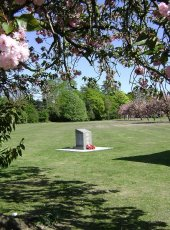 30 - The Memorial Plaque surrounded by the Avenue of Remembrance Cherry Trees