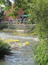 40 - The Duck Race gets underway