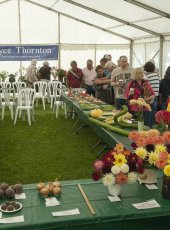 The Autumn Flower Show marquee