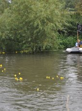 Collecting the ducks after the race
