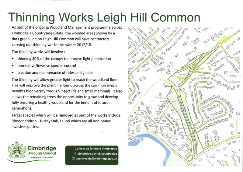Leigh Hill Thinning Works coming thes Winter 2017/18